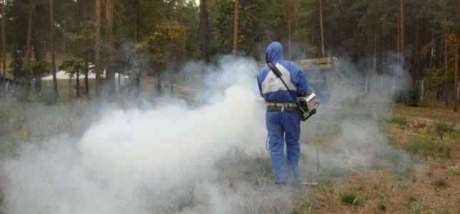kak-izbavitsya-ot-komarov2