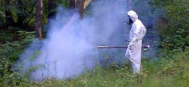 kak-izbavitsya-ot-komarov4