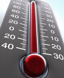 Черные жуки дома больше всего боятся температурных колебаний