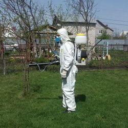 Уничтожение комаров санитарной службой