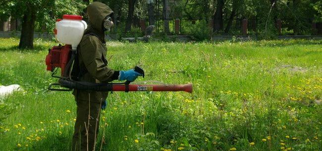 professionalnaya-obrabotka-ot-komarov