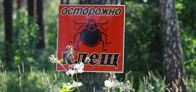 obrabotka-protiv-kleshchej