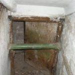 Как избавиться от плесени в подвале дома