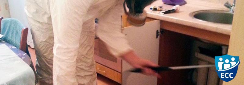 Уничтожение клопов на кухне