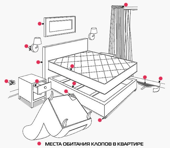 Клопы в квартире как избавиться
