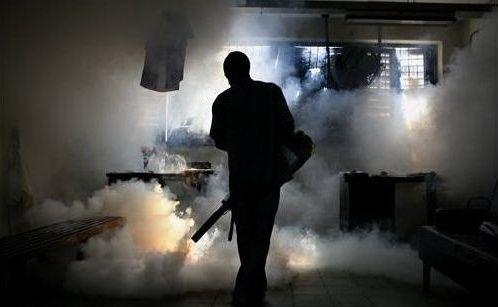 Фумигация «горячим туманом» - (GAP)