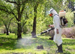 профессиональная обработка участка от комаров и клещей