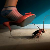 Механические средства борьбы с тараканами
