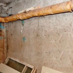Проведение дератизации в многоквартирном доме