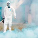 Химическая дератизация