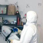 Уничтожение клопов в квартире в Москве