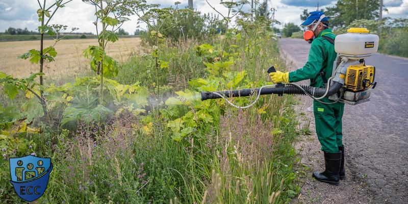 Борьба с сорняками - гербицидная обработка
